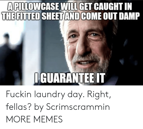 Dank, Laundry, and Memes: APILLOWCASE WILL GET CAUGHT IN  THE FITTED SHEETAND  COME OUT DAMP  GUARANTEE IT Fuckin laundry day. Right, fellas? by Scrimscrammin MORE MEMES
