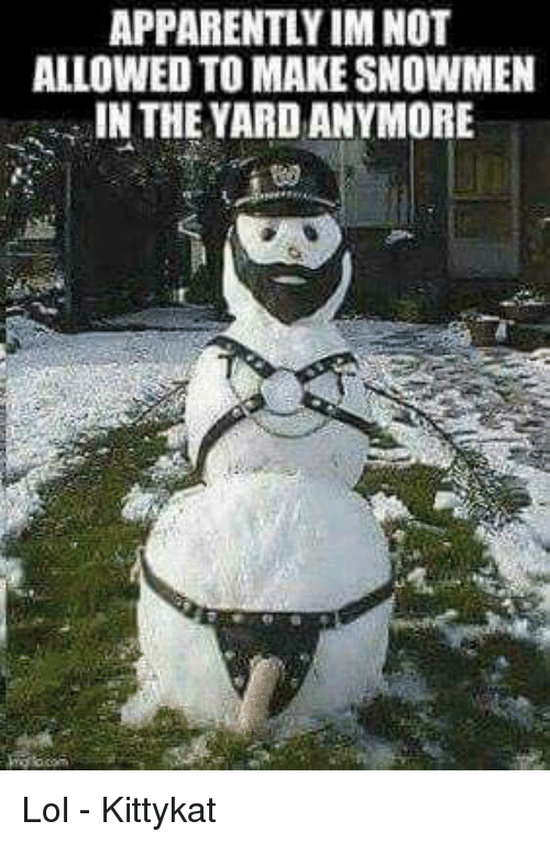 Apparently, Lol, and Memes: APPARENTLY IM NO  ALLOWED TO MAKE SNOWMEN  IN THE YARD ANYMORE  0 Lol - Kittykat