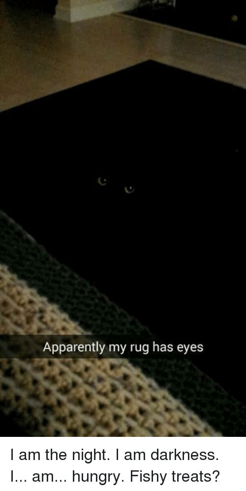 Apparently, Hungry, and Memes: Apparently my rug has eyes I am the night. I am darkness. I... am... hungry. Fishy treats?