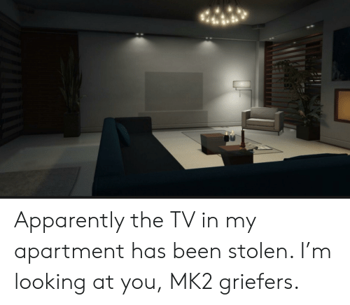 Apparently, Been, and Looking: Apparently the TV in my apartment has been stolen. I'm looking at you, MK2 griefers.