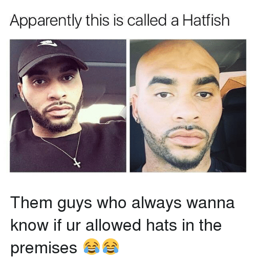 Apparently, Memes, and Wanna Know: Apparently this is called a Hatfish Them guys who always wanna know if ur allowed hats in the premises 😂😂