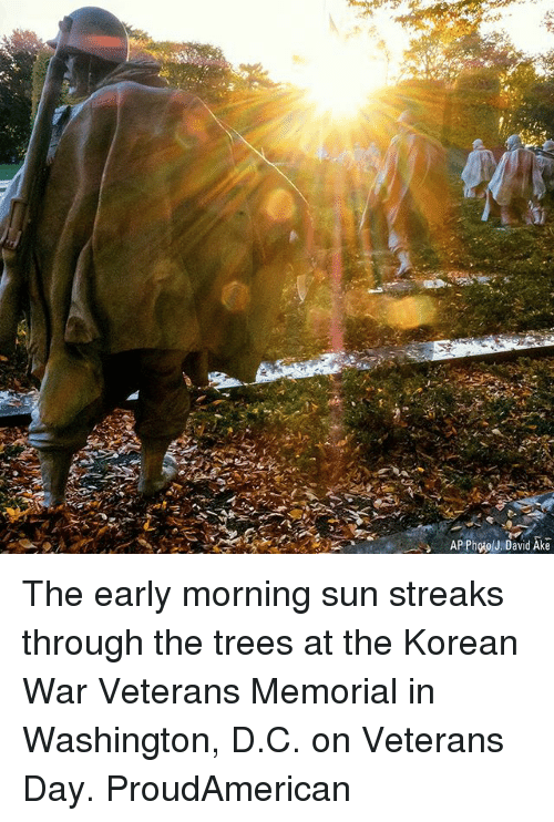 Memes, Trees, and Korean: APPhoolJ. David Ake The early morning sun streaks through the trees at the Korean War Veterans Memorial in Washington, D.C. on Veterans Day. ProudAmerican