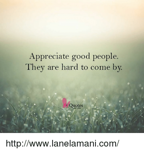 Appreciate Good People They Are Hard to Come by Quotes for You