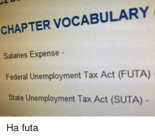 APTER VOCABULARY Salaries Expense Federal Unemployment Tax