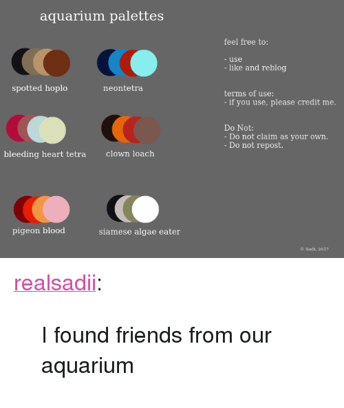 Friends Target And Tumblr Aquarium Palettes Feel Free To Use Like