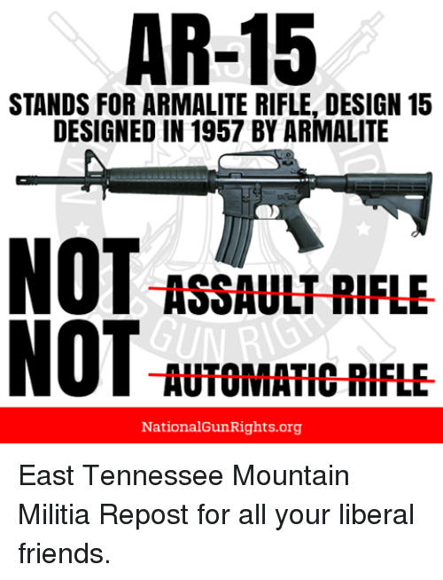 Image result for ar 15  ar16