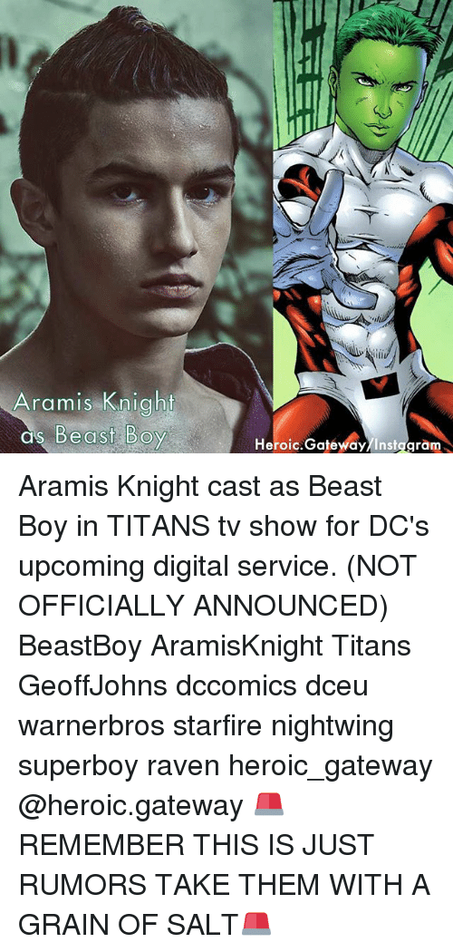 Memes, Gateway, and Raven: Aramis Knight  as Be  Heroic.Gatewdy/Instggram Aramis Knight cast as Beast Boy in TITANS tv show for DC's upcoming digital service. (NOT OFFICIALLY ANNOUNCED) BeastBoy AramisKnight Titans GeoffJohns dccomics dceu warnerbros starfire nightwing superboy raven heroic_gateway @heroic.gateway 🚨REMEMBER THIS IS JUST RUMORS TAKE THEM WITH A GRAIN OF SALT🚨