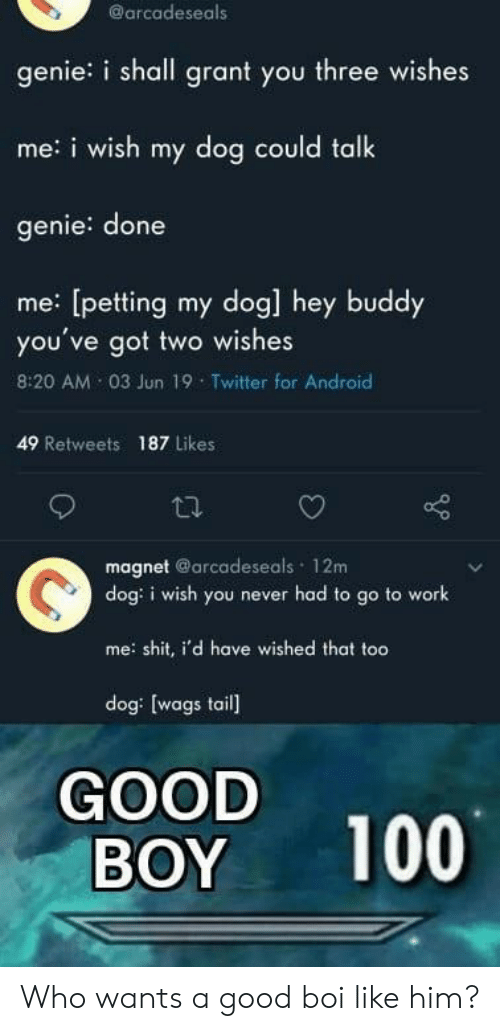 Android, Twitter, and Work: @arcadeseals  genie: i shall grant you three wishes  me:i wish my dog could talk  genie: done  me: [petting my dog] hey buddy  you've got two wishes  8:20 AM 03 Jun 19 Twitter for Android  49 Retweets  187 Likes  magnet @arcadeseals 12m  dog: i wish you never had to go to work  me shit, i'd have wished that too  dog: [wags tail  GOOD  BOY  100 Who wants a good boi like him?