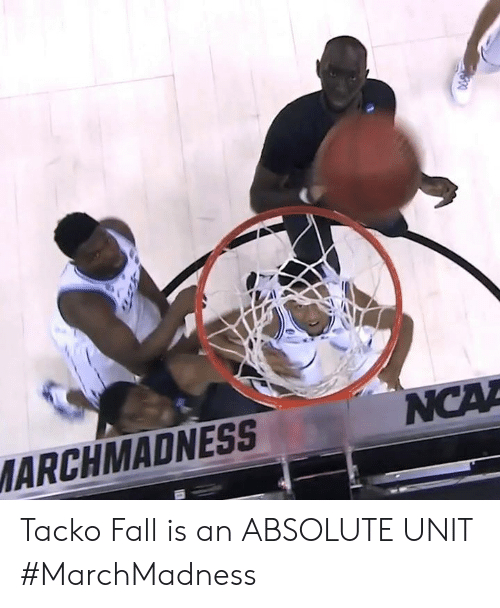 Fall, Unit, and Marchmadness: ARCHMADNESS Tacko Fall is an ABSOLUTE UNIT #MarchMadness