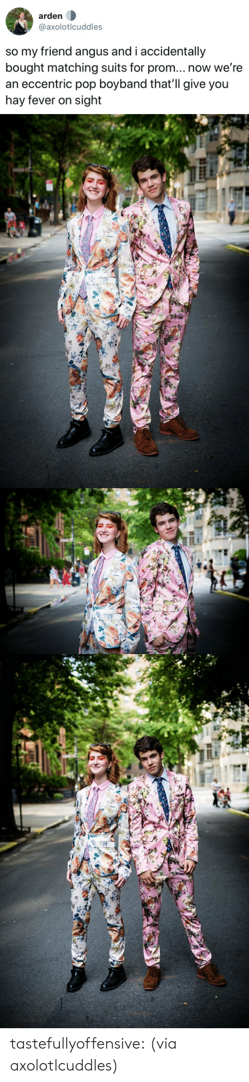 Pop, Tumblr, and Twitter: arden  @axolotlcuddles  so my friend angus and i accidentally  bought matching suits for prom... now we're  an eccentric pop boyband that'll give you  hay fever on sight tastefullyoffensive:  (via axolotlcuddles)