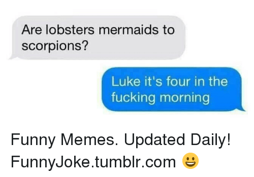 Fucking, Funny, and Memes: Are lobsters mermaids to  scorpions?  Luke it's four in the  fucking morning Funny Memes. Updated Daily! ⇢ FunnyJoke.tumblr.com 😀