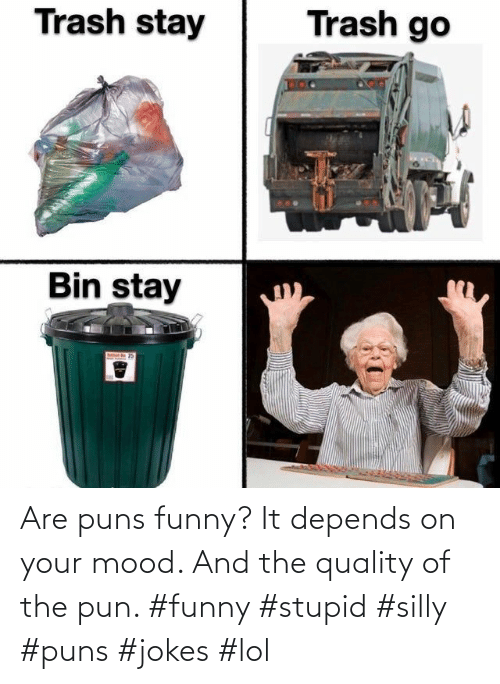 Funny, Lol, and Mood: Are puns funny? It depends on your mood. And the quality of the pun. #funny #stupid #silly #puns #jokes #lol