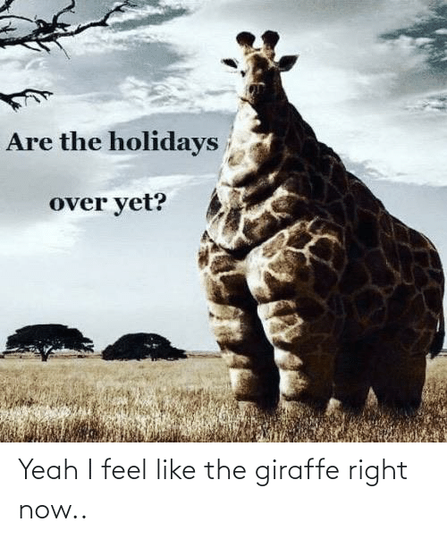 Are The Holidays Over Yet Yeah I Feel Like The Giraffe Right Now Yeah Meme On Me Me