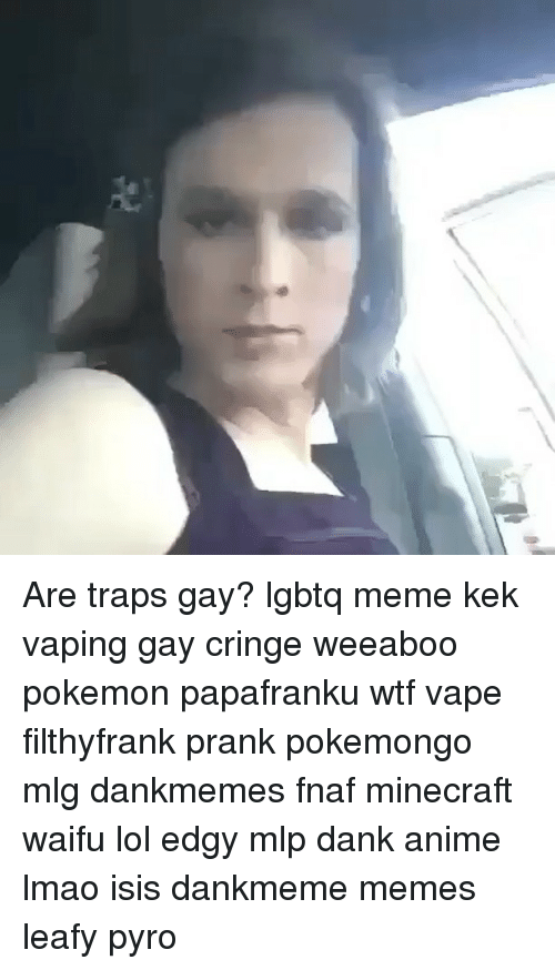 Are Traps Gay Lgbtq Meme Kek Vaping Gay Cringe Weeaboo Pokemon
