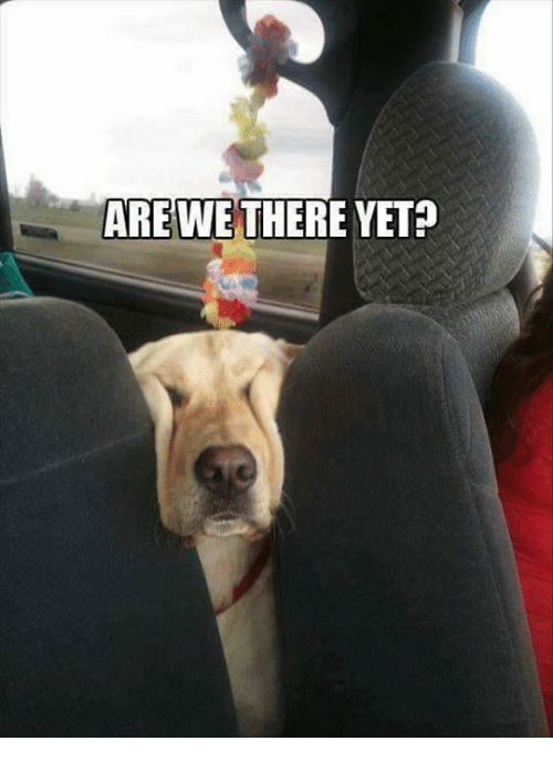 ARE WE THERE YET?   Meme on ME.ME