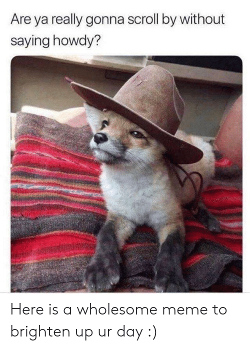 Meme, Wholesome, and Day: Are ya really gonna scroll by without  saying howdy? Here is a wholesome meme to brighten up ur day :)