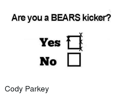 Nfl, Bears, and Yes: Are you a BEARS kicker?  Yes  No
