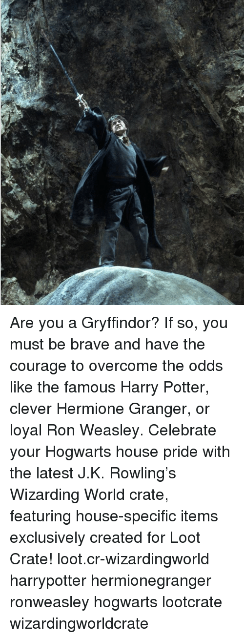 Memes, 🤖, and Wizard: Are you a Gryffindor? If so, you must be brave and have the courage to overcome the odds like the famous Harry Potter, clever Hermione Granger, or loyal Ron Weasley. Celebrate your Hogwarts house pride with the latest J.K. Rowling's Wizarding World crate, featuring house-specific items exclusively created for Loot Crate! loot.cr-wizardingworld harrypotter hermionegranger ronweasley hogwarts lootcrate wizardingworldcrate
