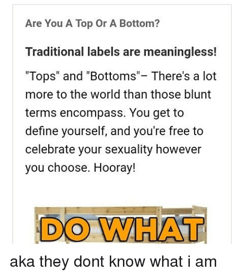 Are you a top or a bottom