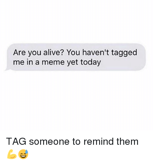 Alive, Meme, and Tagged: Are you alive? You haven't tagged  me in a meme yet today TAG someone to remind them 💪😅