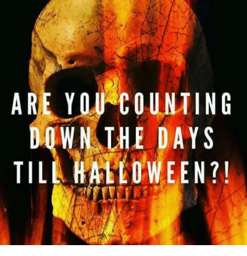 how many more days until halloween dank halloween and are you counting wn the days till halloween