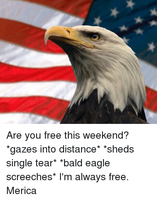 are you free this weekend gazes into distance sheds single 11227027 are you free this weekend? *gazes into distance* *sheds single,Are You Free This Weekend Meme