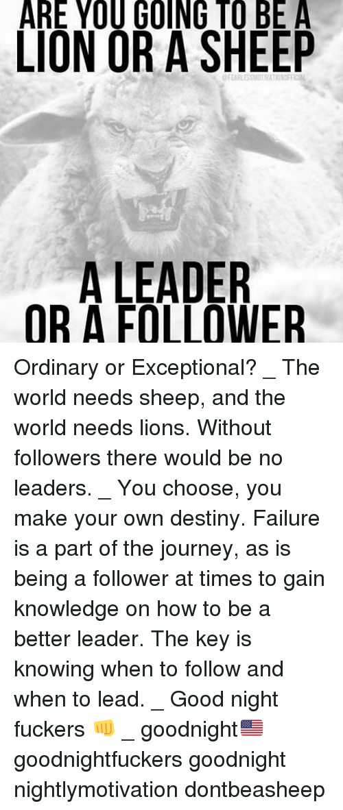 are you a leader or a follower You don't even need to have people reporting to you to be a leader a janitor can influence people and lead just as a ceo can likewise, anyone can become a follower, even while holding a leadership position.