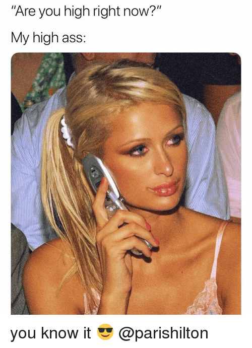 "Ass, Weed, and Marijuana: Are you high right now?""  My high ass: you know it 😎 @parishilton"