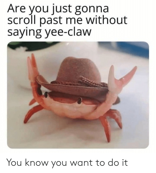 Are You Just Gonna Scroll Past Me Without Saying Yee-Claw You Know