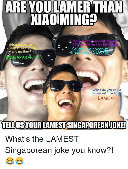 Memes, 🤖, and Prawn: ARE YOU LAMER THAN  XIAO MING?  th coconut tree a  ECP) end struck by light  What do you call  ransformers Claus  e COCOn  and mother?  SU  -tree  NSPAREN  What do you call a  prawn with no legs?  LAME  LUN!!!!  TELLUSYOUR LAMESTSINGAPOREANIJOKE! What's the LAMEST Singaporean joke you know?! 😂😂