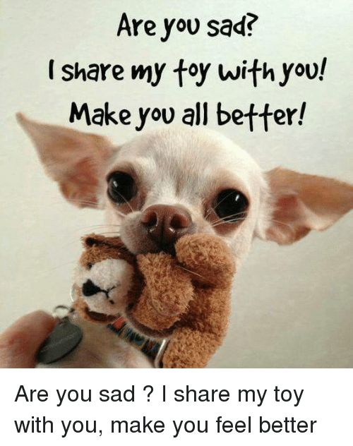 Are You Sad Share My Toy With You Make You All Better Are You Sad