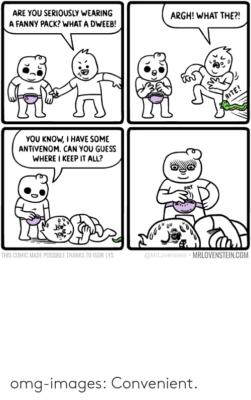 Omg, Tumblr, and Blog: ARE YOU SERIOUSLY WEARING  A FANNY PACK? WHAT A DWEEB!  ARGH! WHAT THE?!  YOU KNOW, I HAVE SOME  ANTIVENOM. CAN YOU GUESS  WHERE I KEEP IT ALL?  PAT  THIS COMIC MADE POSSIBLE THANKS TO IGOR LYS  @MrLovenstein MRLOVENSTEIN.COM omg-images:  Convenient.
