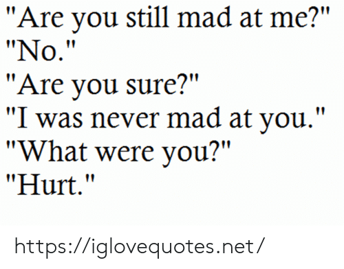 """Mad, Never, and Net: """"Are you still mad at me?""""  """"No.""""  """"Are you sure?""""  """"I was never mad at you."""".  """"What were you?""""  """"Hurt."""" https://iglovequotes.net/"""
