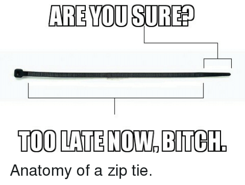 ARE YOU SUREP TOO LATE NOW BITCH Anatomy of a Zip Tie