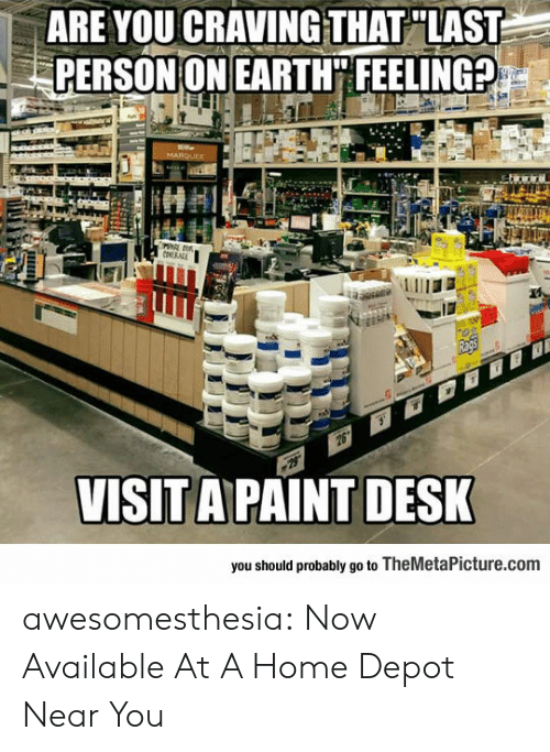 Tumblr, Blog, and Desk: ARE YOUCRAVINGTHAT LAST  PERSON ON EARTH FEELING?  VISIT A PAINT DESK  you should probably go to TheMetaPicture.com awesomesthesia:  Now Available At A Home Depot Near You