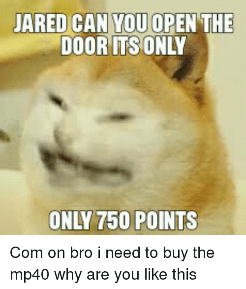Why Are You Like This, Com, and Can: ARED CAN YOU OPEN THE  DOOR ITSONLY  ONLY 750 POINTS