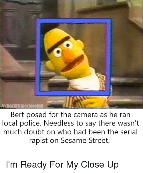 Police, Sesame Street, and Camera: arethV  Bert posed for the camera as he ran  local police. Needless to say there wasn't  much doubt on who had been the serial  rapist on Sesame Street. I'm Ready For My Close Up