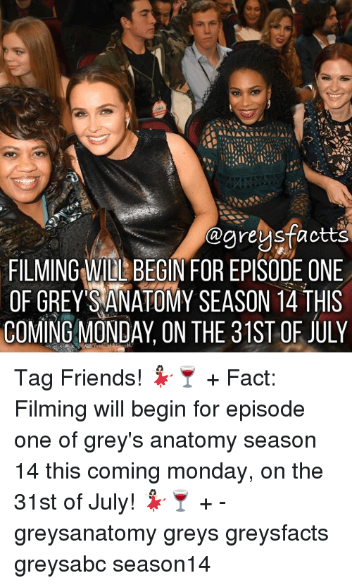 Friends, Memes, and Grey's Anatomy: @areusfactts  FILMING WIDL BEGIN FOR EPISODE ONE  OF GREY SANATOMY SEASON 4 THS  COMING MONDAY, ON THE 31ST OF JULY Tag Friends! 💃🏻🍷 + Fact: Filming will begin for episode one of grey's anatomy season 14 this coming monday, on the 31st of July! 💃🏻🍷 + - greysanatomy greys greysfacts greysabc season14