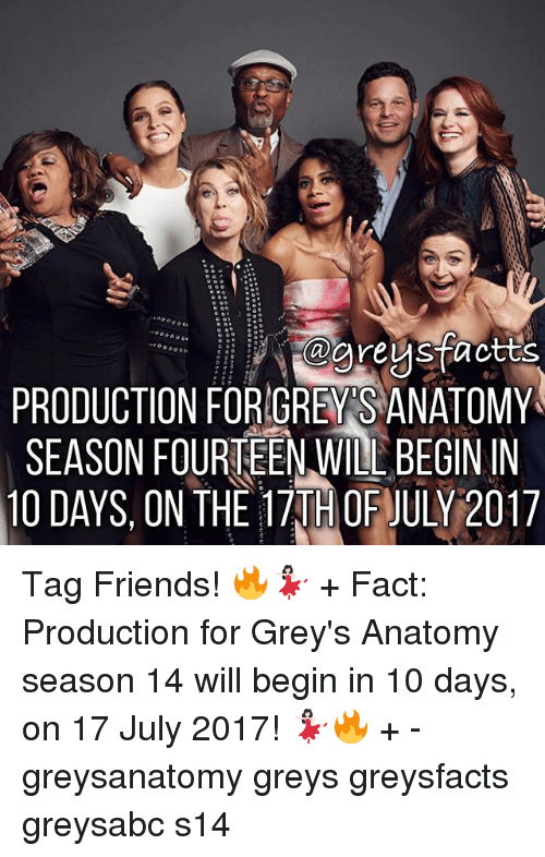 Friends, Memes, and Grey's Anatomy: areusfactts  PRODUCTION FORIGRENS ANATOMY  SEASON FOURTEEN WILL BEGININ  10 DAYS, ON THEm。FJULY2017 Tag Friends! 🔥💃🏻 + Fact: Production for Grey's Anatomy season 14 will begin in 10 days, on 17 July 2017! 💃🏻🔥 + - greysanatomy greys greysfacts greysabc s14