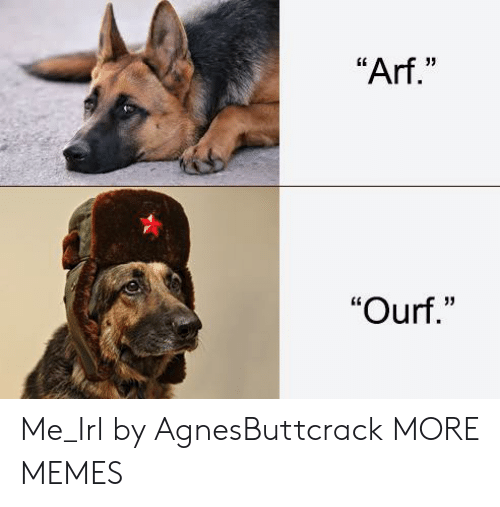 """Dank, Memes, and Target: """"Arf.""""  """"Ourf."""" Me_Irl by AgnesButtcrack MORE MEMES"""