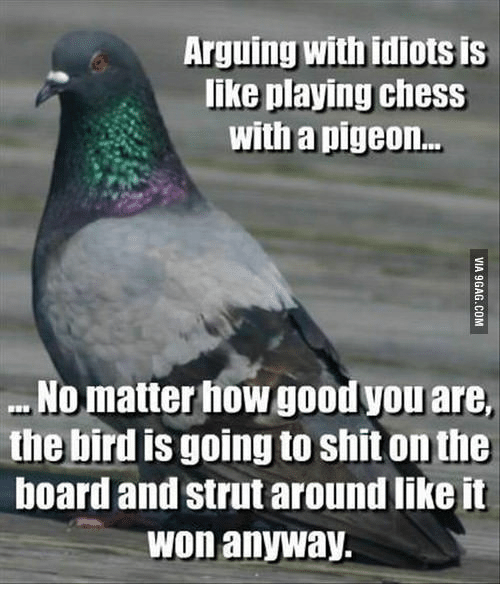 Chess, Struts, and Pigeon: Arguing With idiotsis  like playing chess  with a pigeon...  No matter how goodyou are,  the bird is going to shitonthe  board and strut around like it  Won anyway.