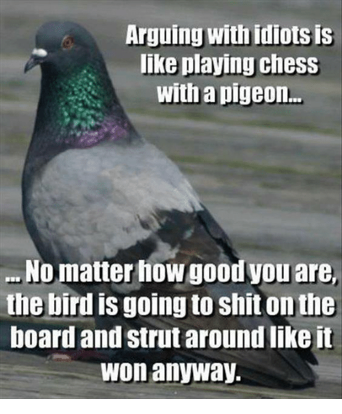 Arguing, Memes, and Shit: Arguing Withidiotsis  like playing Chess  With a pigeon...  No matter how goodyou are,  the bird is going to shit onthe  board and strut around like it  won anyway.