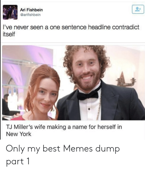 Memes, New York, and Best: Ari Fishbein  @arifishbein  I've never seen a one sentence headline contradict  tself  TJ Miller's wife making a name for herself in  New York Only my best Memes dump part 1