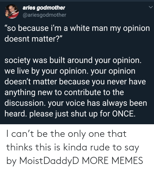 """Dank, Memes, and Rude: aries godmother  @ariesgodmother  """"so because i'm a white man my opinion  doesnt matter?""""  society was built around your opinion.  we live by your opinion. your opinion  doesn't matter because you never have  anything new to contribute to the  discussion. your voice has always been  heard. please just shut up for ONCE. I can't be the only one that thinks this is kinda rude to say by MoistDaddyD MORE MEMES"""