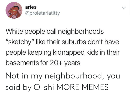 """Dank, Memes, and Target: aries  @proletariatitty  White people call neighborhoods  """"sketchy"""" like their suburbs don't have  people keeping kidnapped kids in their  basements for 20+ years Not in my neighbourhood, you said by O-shi MORE MEMES"""