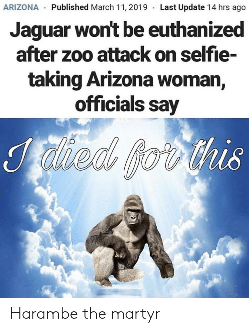 Selfie, Arizona, and Jaguar: ARIZONA Published March 11,2019 Last Update 14 hrs ago  Jaguar won't be euthanized  after zoo attack on selfie-  taking Arizona woman  officials say  218 Harambe the martyr