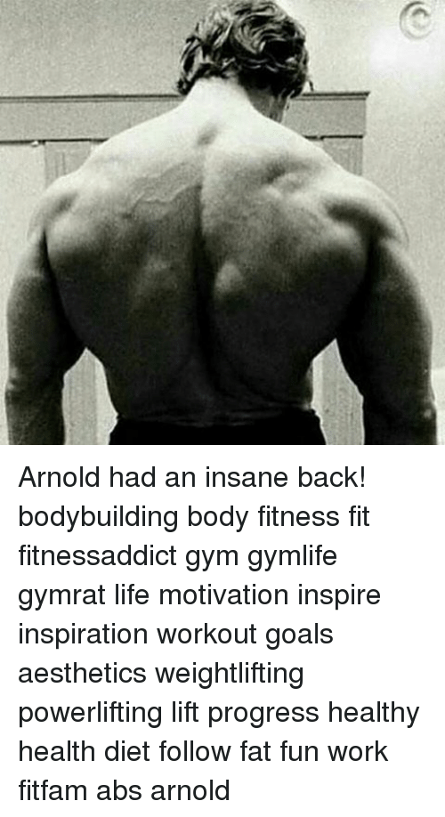 Arnold Had An Insane Back Bodybuilding Body Fitness Fit
