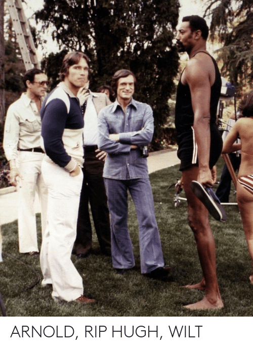Arnold, Amp, and Rip: ARNOLD, RIP HUGH,  WILT