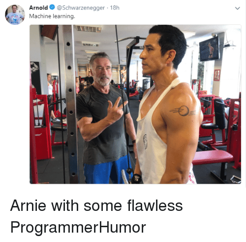 Arnold Schwarzenegger, Machine Learning, and Arnold: Arnold @Schwarzenegger 18h  Machine learning. Arnie with some flawless ProgrammerHumor