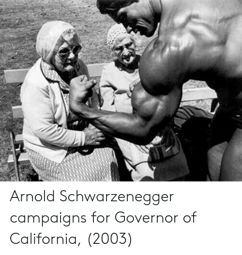 Arnold Schwarzenegger, California, and Arnold: Arnold Schwarzenegger campaigns for Governor of California, (2003)